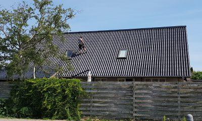Tagrensning og -maling - Midtsjællands Tagrenovering